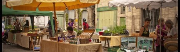 Marché de Producteurs Bio et locaux tous les samedis matin Place Gambetta à PEZENAS